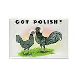 Got Polish? Rectangle Magnet (100 pack)