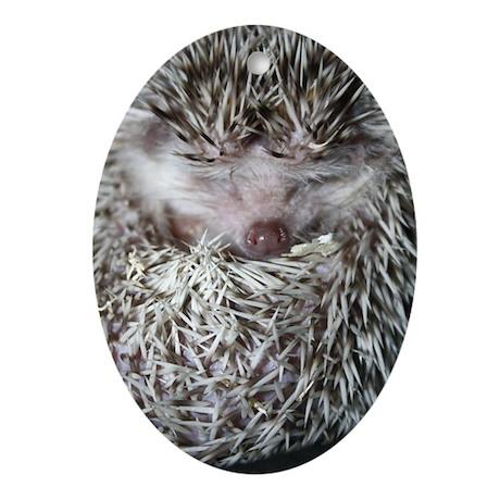 Dennis Hedgehog Ornament (Oval)