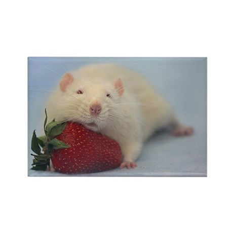 Strawberry Pillow magnet