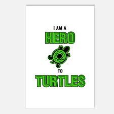 Turtle Hero Postcards (Package of 8)