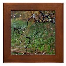 Twisted hazel Framed Tile