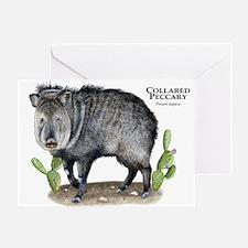 Collared Peccary Greeting Card