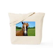 Bay horse close-up Tote Bag