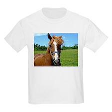 Bay horse close-up T-Shirt