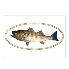 Unique Salt water fish Postcards (Package of 8)