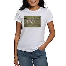 Golden Gate Bridge Dog T-Shirt