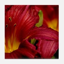 Red Lilly Tile Coaster