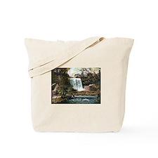 1906 Minnehaha Falls Tote Bag