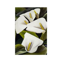 Calla Lily Rectangle Magnet (10 pack)