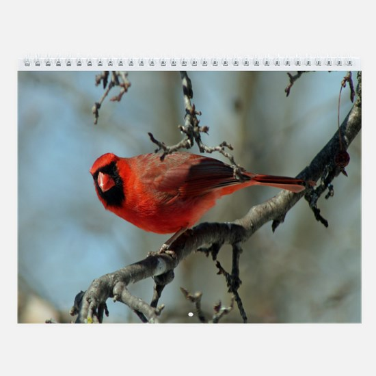 Scenic Vistas Calendar
