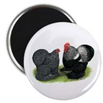 "Cochin Couple 2.25"" Magnet (10 pack)"