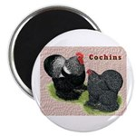 Cochin Rooster & Hen Magnet