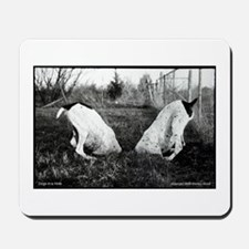 German Shorthaired Pointer Dogs in a Hole Mousepad
