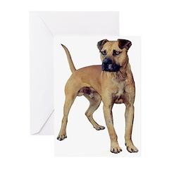 Real Bulldog Greeting Cards (Pk of 20)