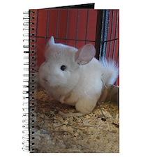 Ivory Journal