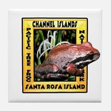Channel Islands NP frog t-shi Tile Coaster