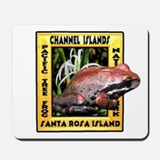 Channel Islands NP frog t-shi Mousepad