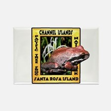 Channel Islands NP frog t-shi Rectangle Magnet