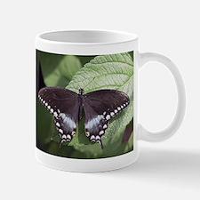 Spicebush Swallowtail Butterfly Mug