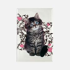 Cute Kitten Kitty Cat Lover Rectangle Magnet