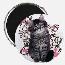 Cute Kitten Kitty Cat Lover Magnet