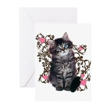 Cute Kitten Kitty Cat Lover Greeting Cards (Pk of
