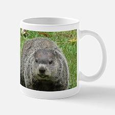 Groundhog Eating Mug