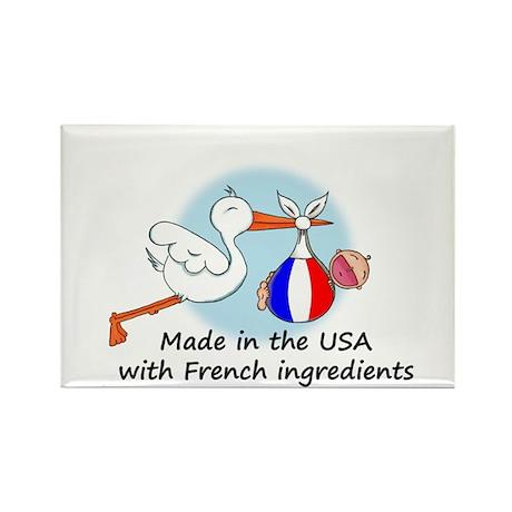 Stork Baby France USA Rectangle Magnet