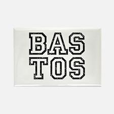 BASTOS-3 Rectangle Magnet