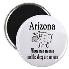 Arizona Sheep Magnet