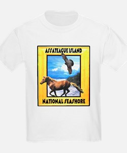 Assateague island national Se T-Shirt