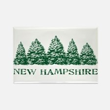NH Winter Evergreens Rectangle Magnet
