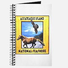 Assateague island national Se Journal