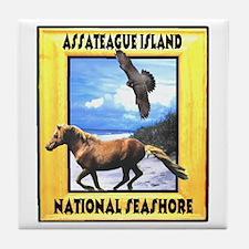 Assateague island national Se Tile Coaster