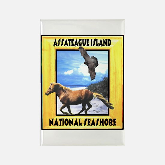 Assateague island national Se Rectangle Magnet