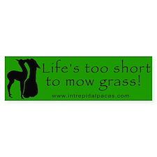 Life's too Short Bumper Bumper Sticker