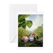 orange-cheeked waxbills Greeting Card