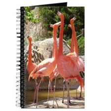 Flamingo 2 Journal