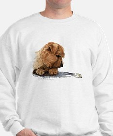 Norfolk and Frog Sweatshirt