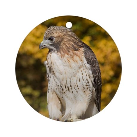Red Tail Hawk Ornament (Round)