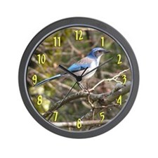 Scrub Jay Birder's Wall Clock