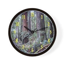 World's Tallest Trees Redwoods Wall Clock