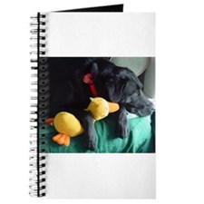 Cute Lab lovers Journal