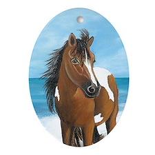 Beach Pony Oval Ornament