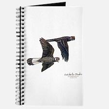 Short-billed Black Cockatoos Journal