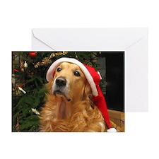 Golden Santa Greeting Cards (Pk of 10)