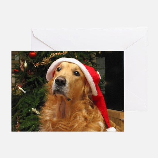 Golden Santa Greeting Cards (Pk of 20)