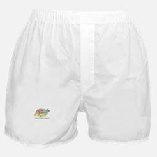 Agility Contacts Boxer Shorts