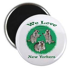 Raccoon New York Magnet