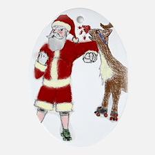 Roller Derby Santa